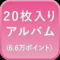 20枚入りアルバム
