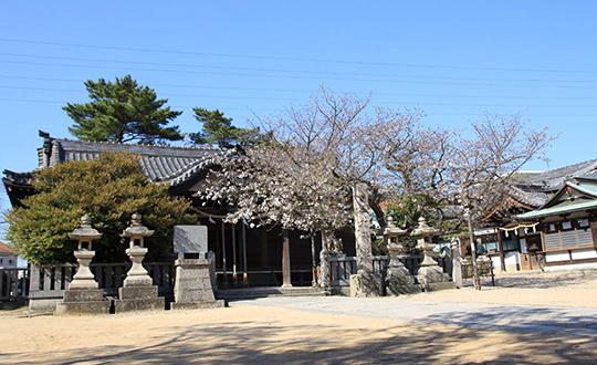 明石市:林神社の写真