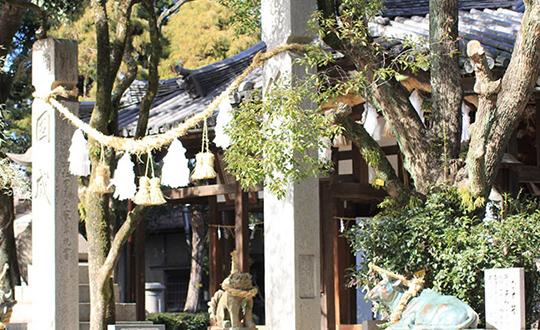 飾磨:英賀神社の写真