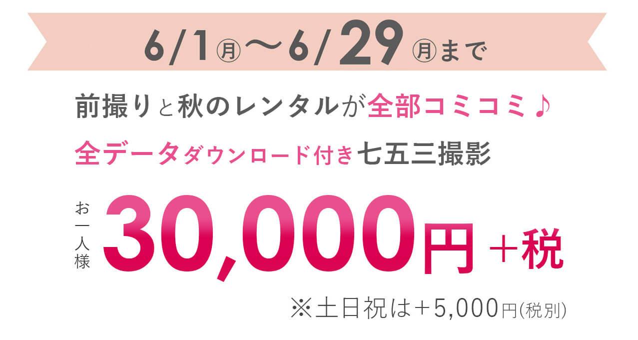 30000円(税別)
