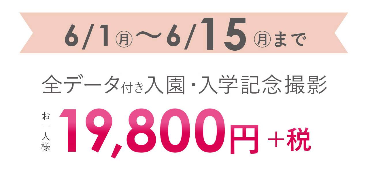 19800円(税別)
