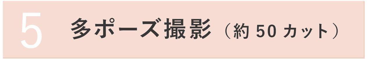 5.多ポーズ撮影(約50カット)